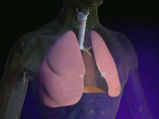 Lung Cancer: How Does Lung Cancer Develop?